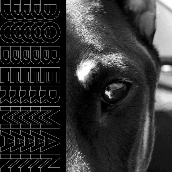 Doberman - Omnisphere PresetBank, Drumkit, Loops